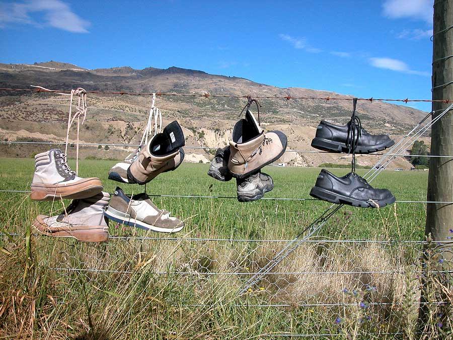 Cadrona shoe-fence