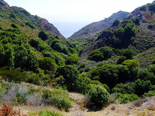 Highway 1 loopt langs de kust van Californië