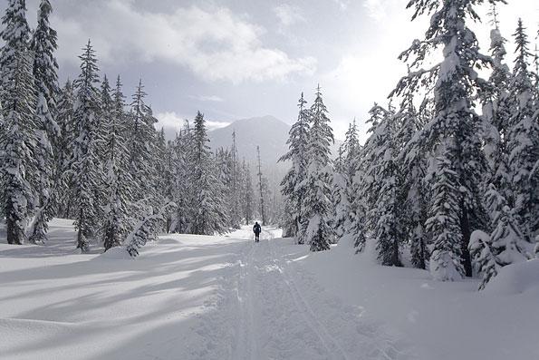 Mount Bachelor in Oregon