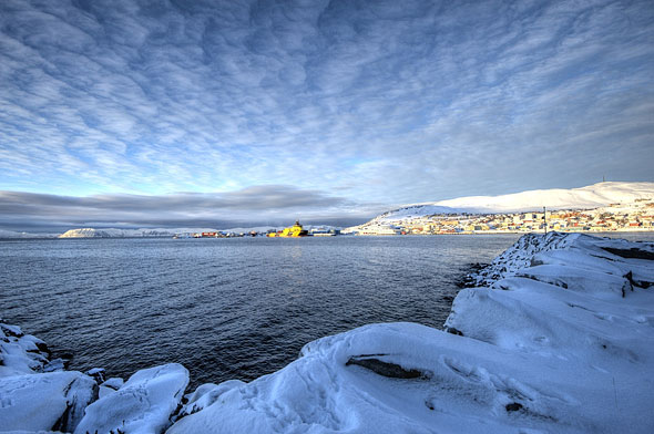Noorse kou in Finnmark