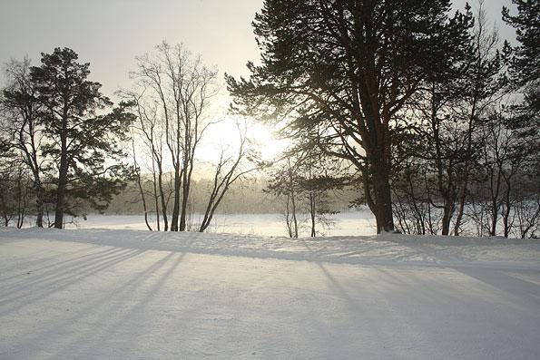 Het koude Noorse landschap