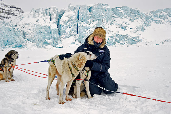 Sledehonden op Spitsbergen